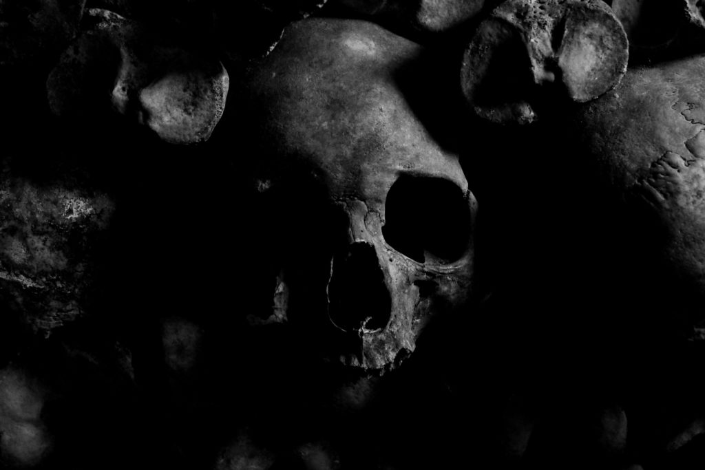 Black-and-white close up of a skull.