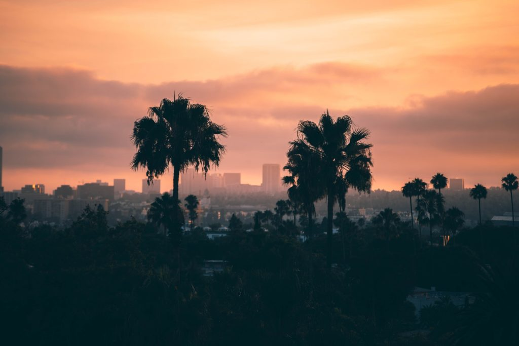 Building and trees during a sunset in Los Angeles, CA.