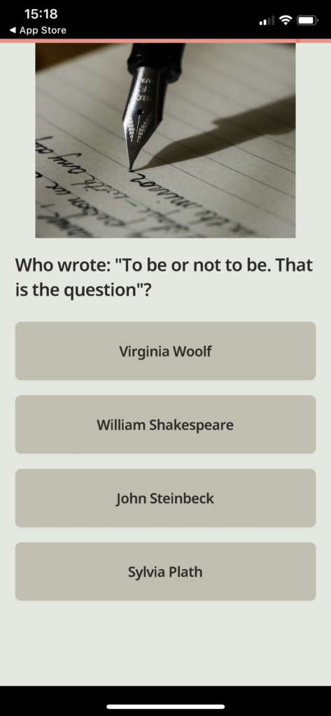 Fig 3. Screenshot taken by Anastasia Voloshina from the app QuizzLand, mnoGoApps, 2021.