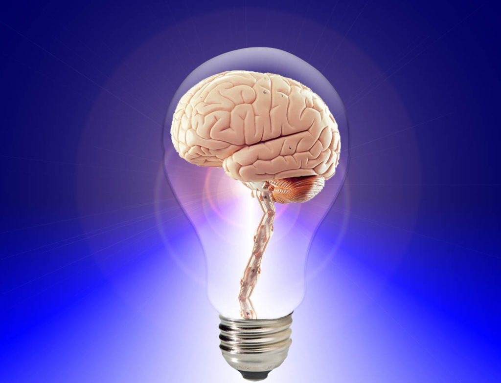 A lightbulb with a brain inside it against a bright blue background.
